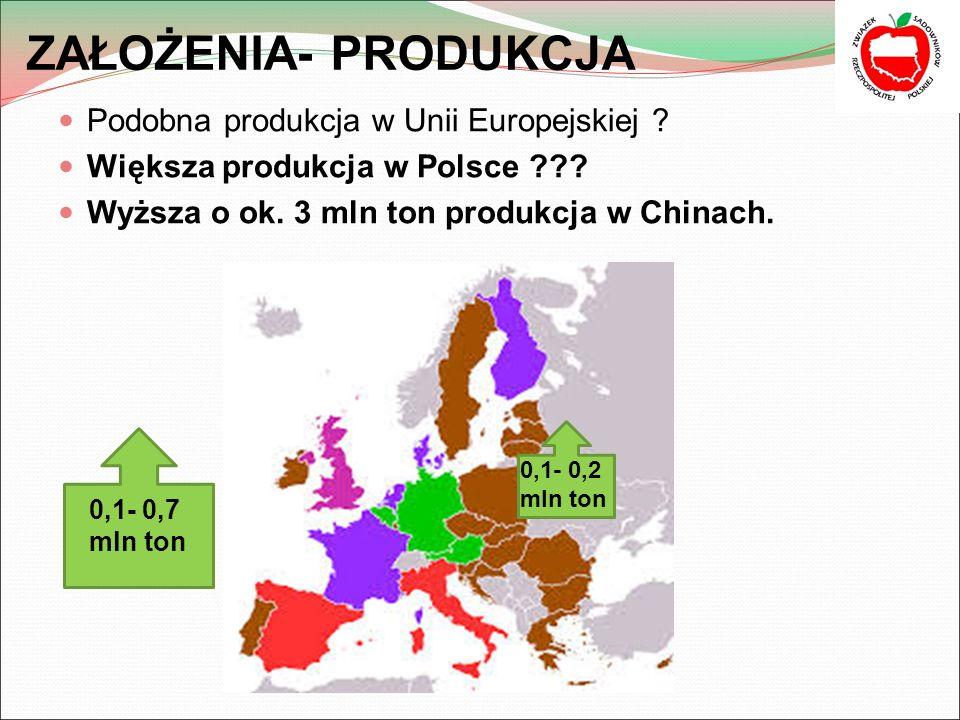 ZAŁOŻENIA- PRODUKCJA Podobna produkcja w Unii Europejskiej