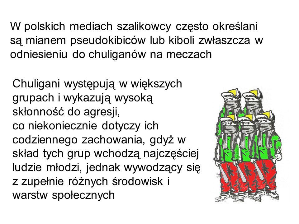W polskich mediach szalikowcy często określani są mianem pseudokibiców lub kiboli zwłaszcza w odniesieniu do chuliganów na meczach