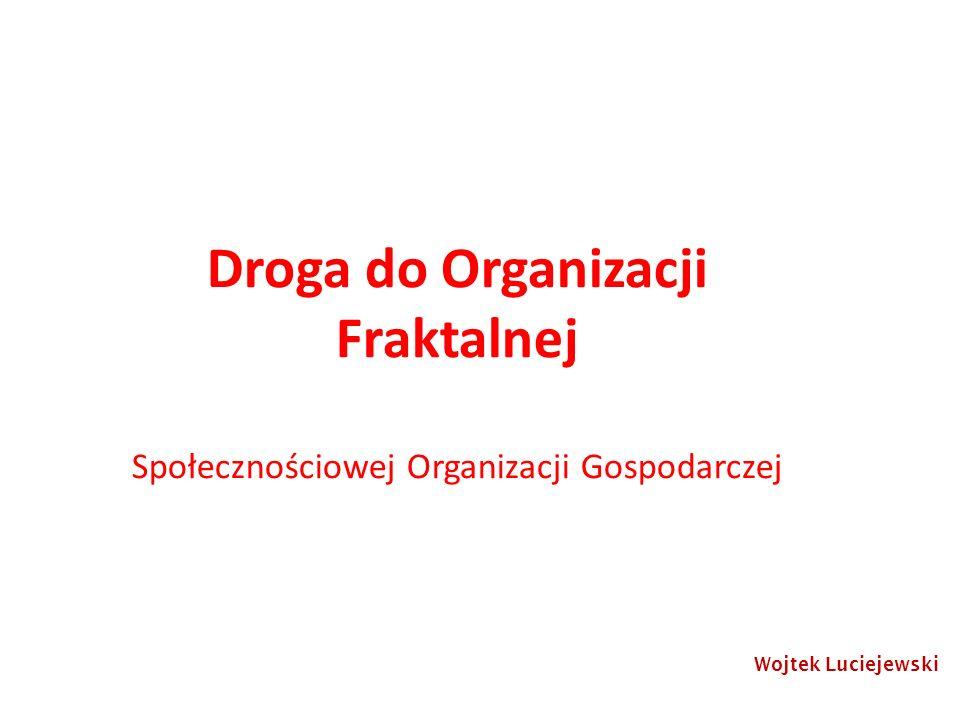 Droga do Organizacji Fraktalnej Społecznościowej Organizacji Gospodarczej