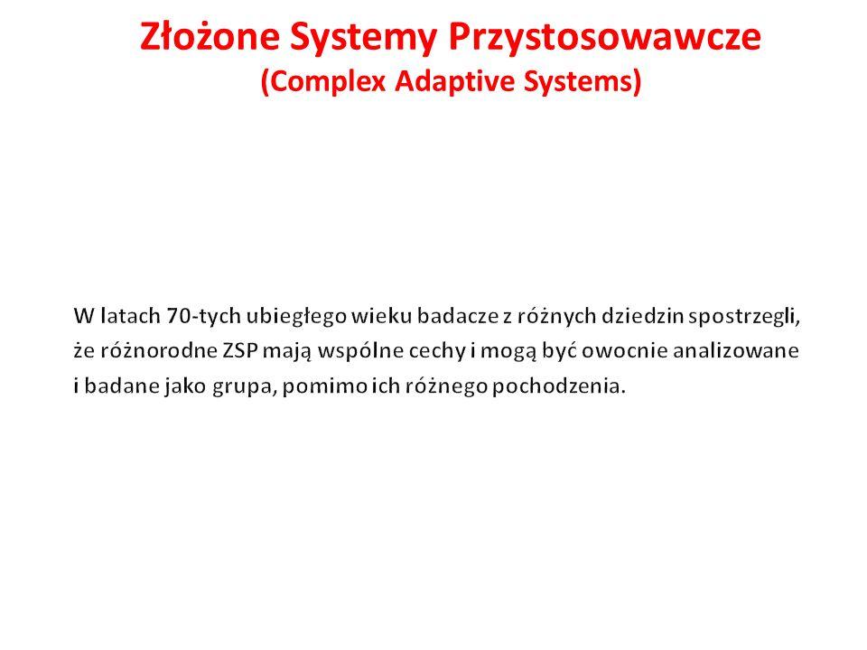 Złożone Systemy Przystosowawcze (Complex Adaptive Systems)