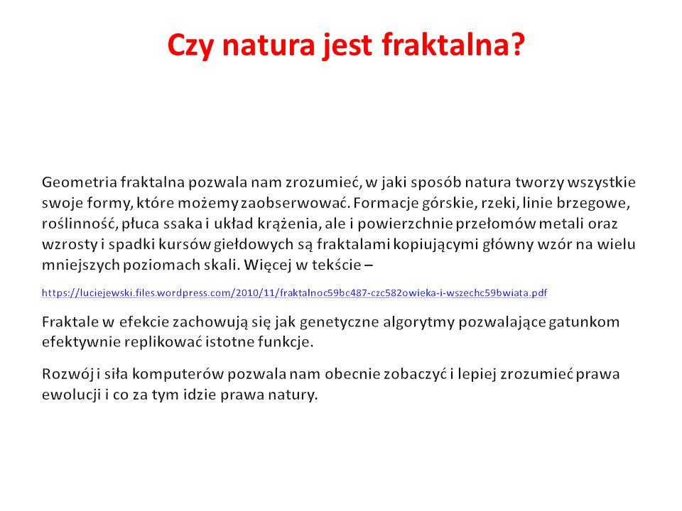 Czy natura jest fraktalna