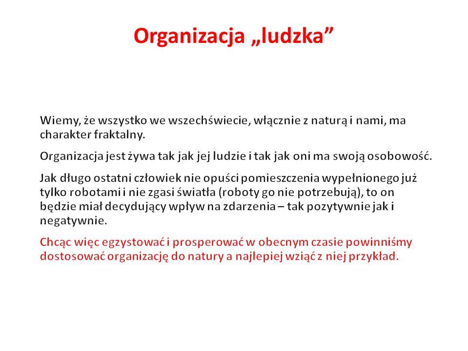 """Organizacja """"ludzka Wiemy, że wszystko we wszechświecie, włącznie z naturą i nami, ma charakter fraktalny."""