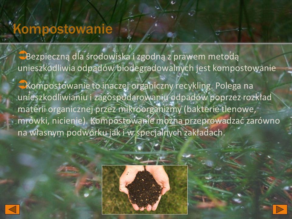 Kompostowanie Bezpieczną dla środowiska i zgodną z prawem metodą unieszkodliwia odpadów biodegradowalnych jest kompostowanie.