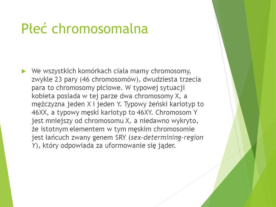 Płeć chromosomalna