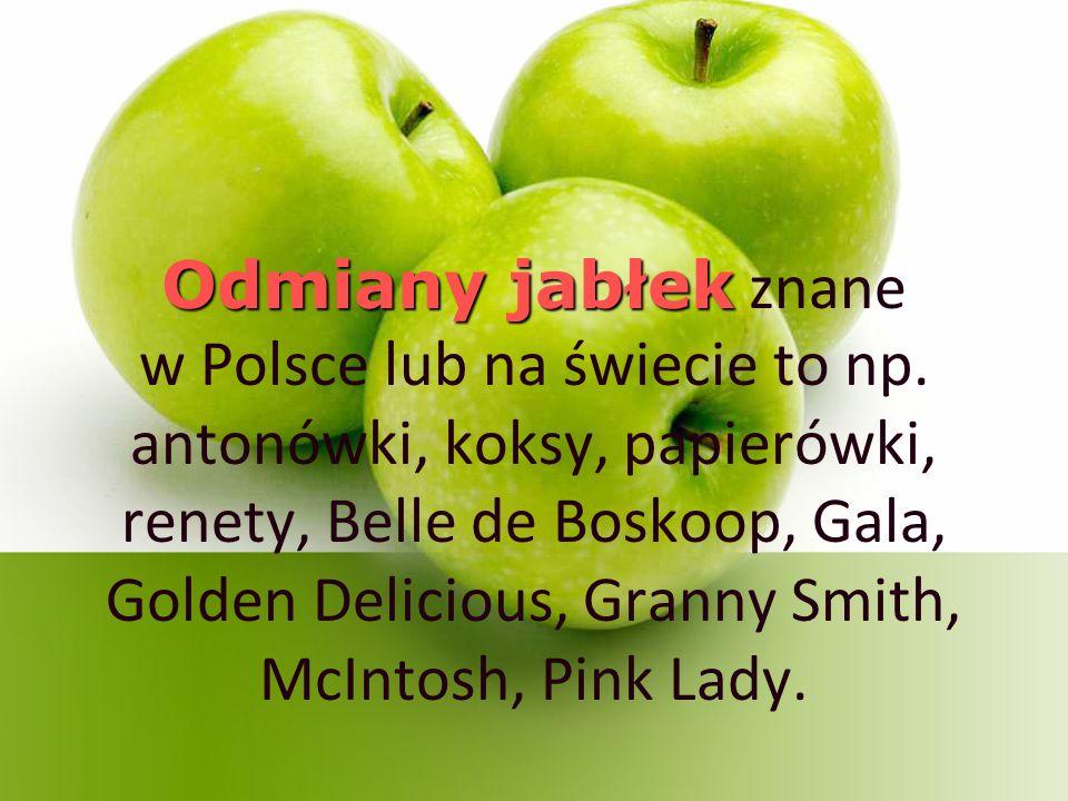 Odmiany jabłek znane w Polsce lub na świecie to np