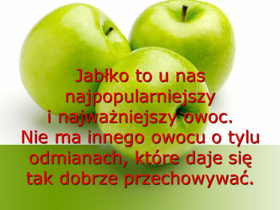 Jabłko to u nas najpopularniejszy i najważniejszy owoc