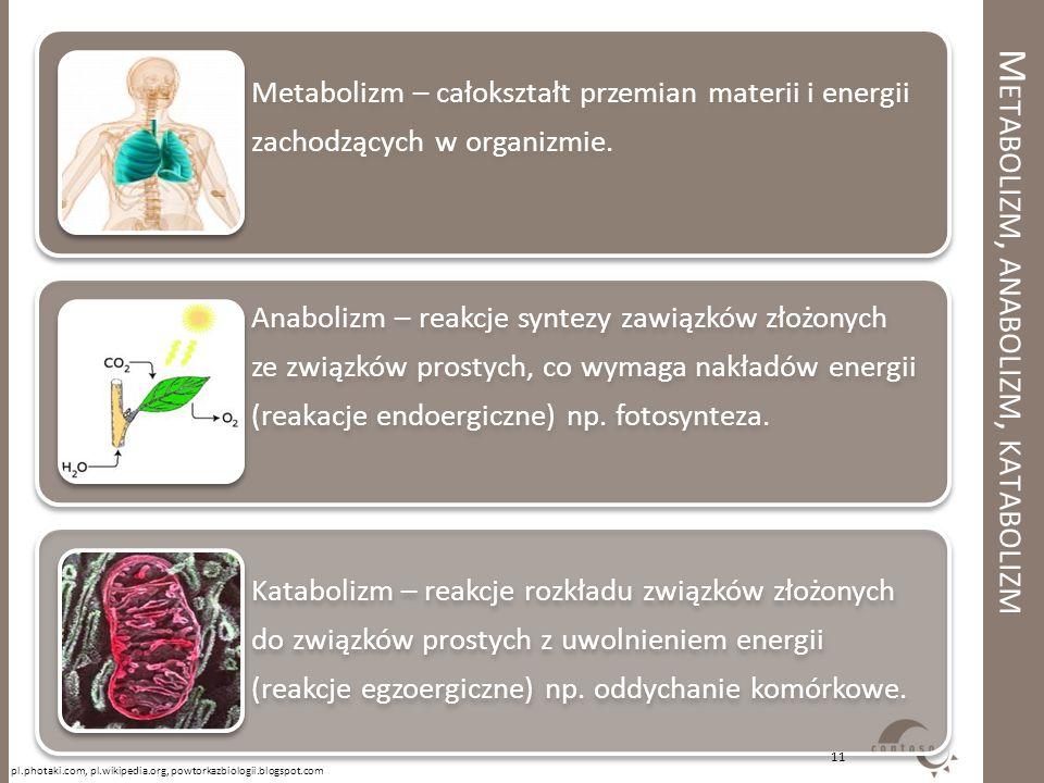 Metabolizm, anabolizm, katabolizm