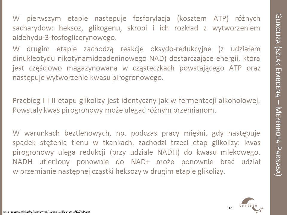 Glikoliza (szlak Embdena – Meyerhofa-Parnasa)