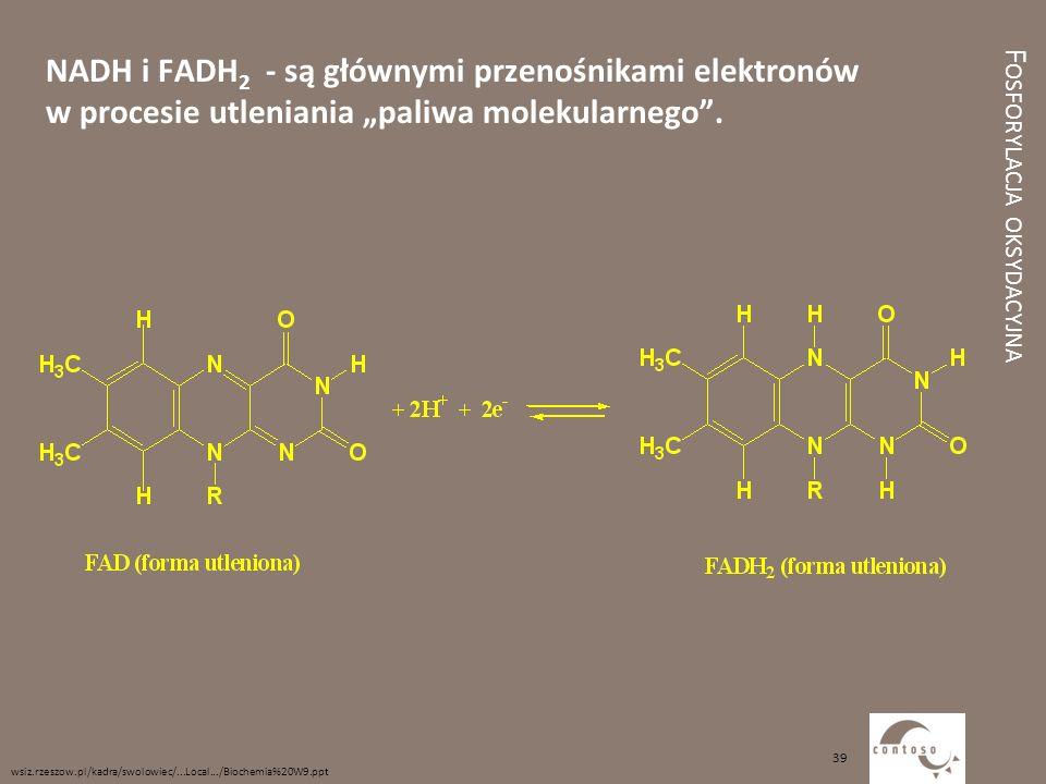 Fosforylacja oksydacyjna