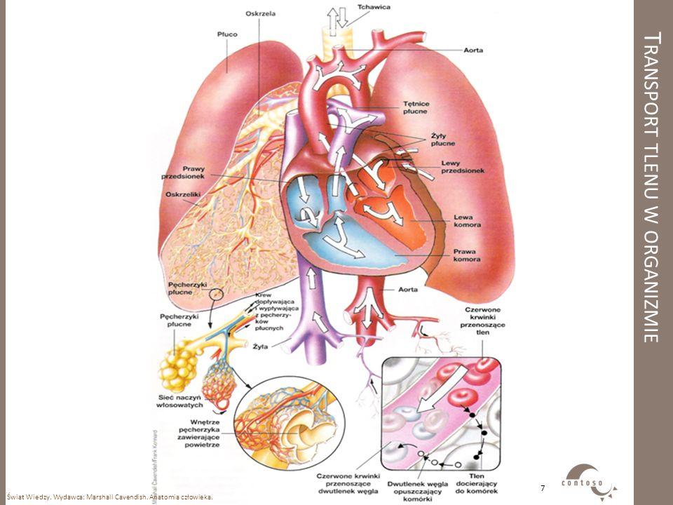 Transport tlenu w organizmie
