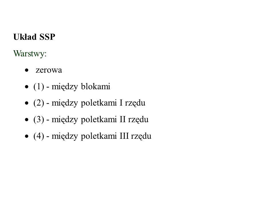 Układ SSP Warstwy:   zerowa.   (1) - między blokami.  (2) - między poletkami I rzędu.