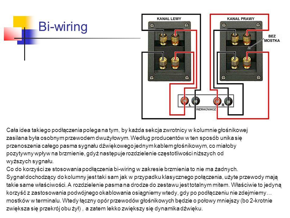 Bi-wiring Cała idea takiego podłączenia polega na tym, by każda sekcja zwrotnicy w kolumnie głośnikowej.