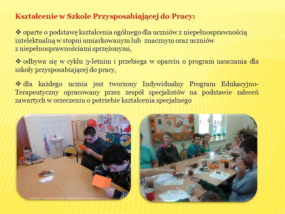 Kształcenie w Szkole Przysposabiającej do Pracy: