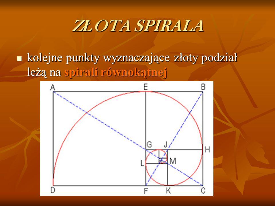 ZŁOTA SPIRALA kolejne punkty wyznaczające złoty podział leżą na spirali równokątnej