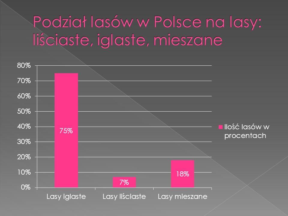 Podział lasów w Polsce na lasy: liściaste, iglaste, mieszane