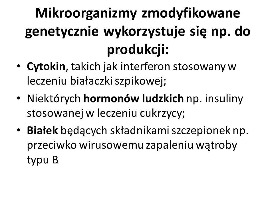 Mikroorganizmy zmodyfikowane genetycznie wykorzystuje się np