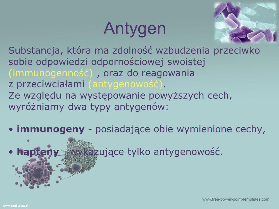 Antygen Substancja, która ma zdolność wzbudzenia przeciwko
