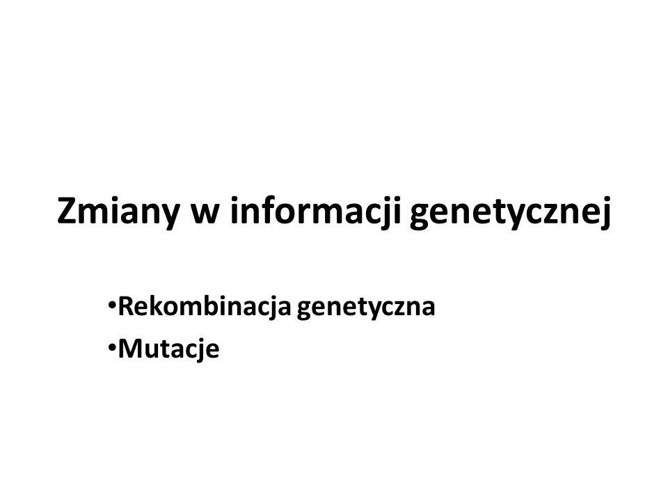 Zmiany w informacji genetycznej