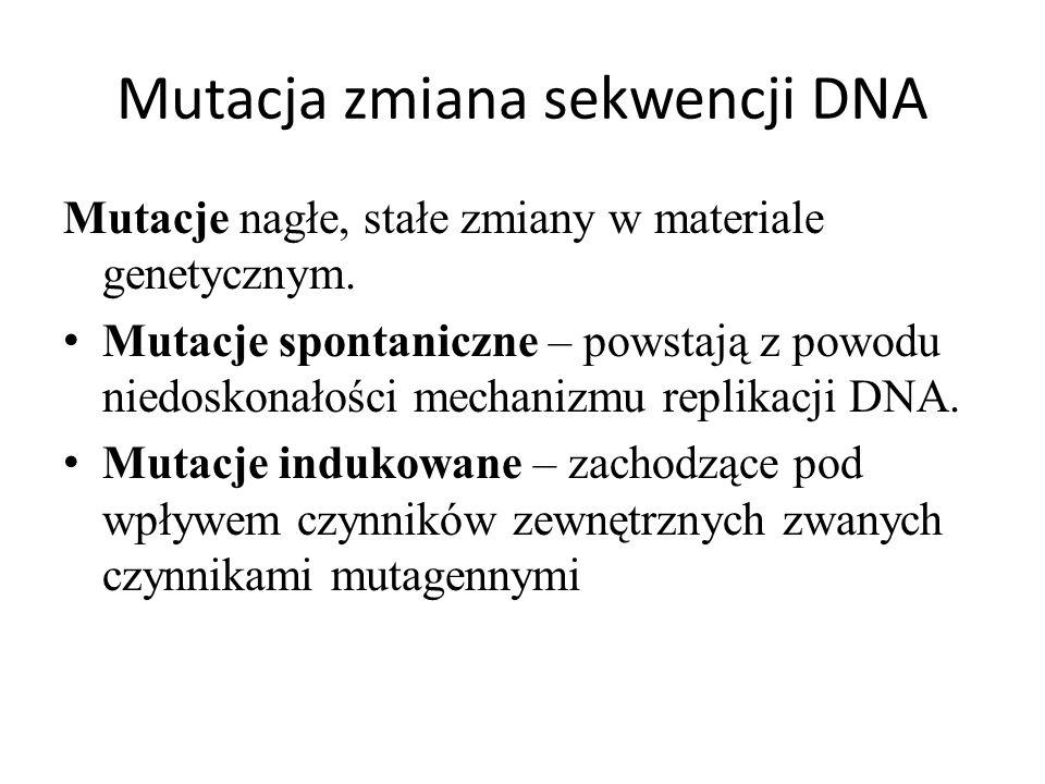 Mutacja zmiana sekwencji DNA