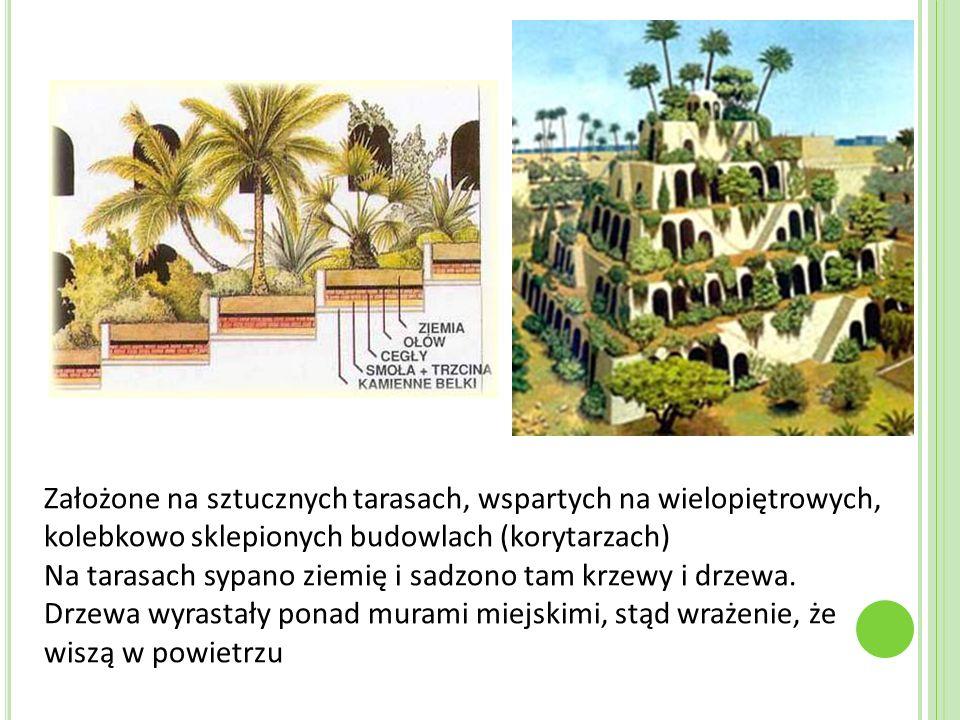 Założone na sztucznych tarasach, wspartych na wielopiętrowych, kolebkowo sklepionych budowlach (korytarzach) Na tarasach sypano ziemię i sadzono tam krzewy i drzewa.