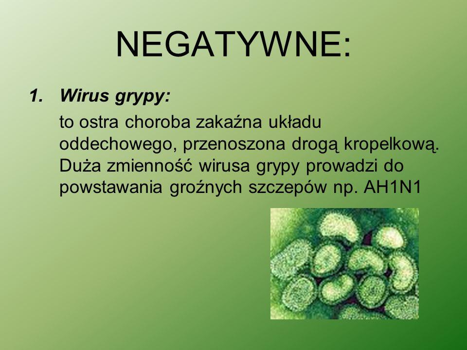 NEGATYWNE: Wirus grypy: