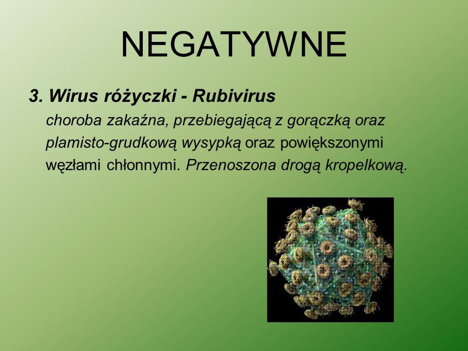 NEGATYWNE 3. Wirus różyczki - Rubivirus