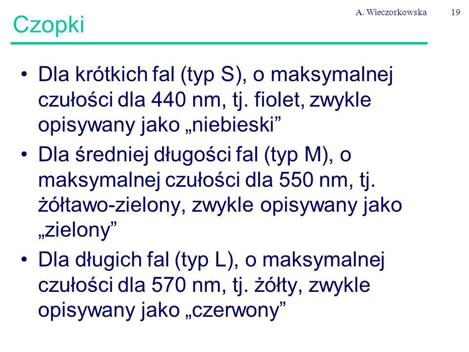 """A. Wieczorkowska Czopki. Dla krótkich fal (typ S), o maksymalnej czułości dla 440 nm, tj. fiolet, zwykle opisywany jako """"niebieski"""