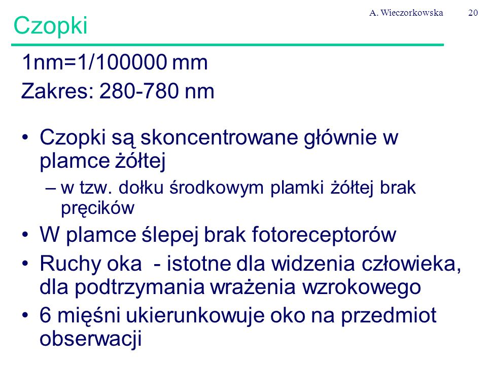 Czopki 1nm=1/100000 mm Zakres: 280-780 nm