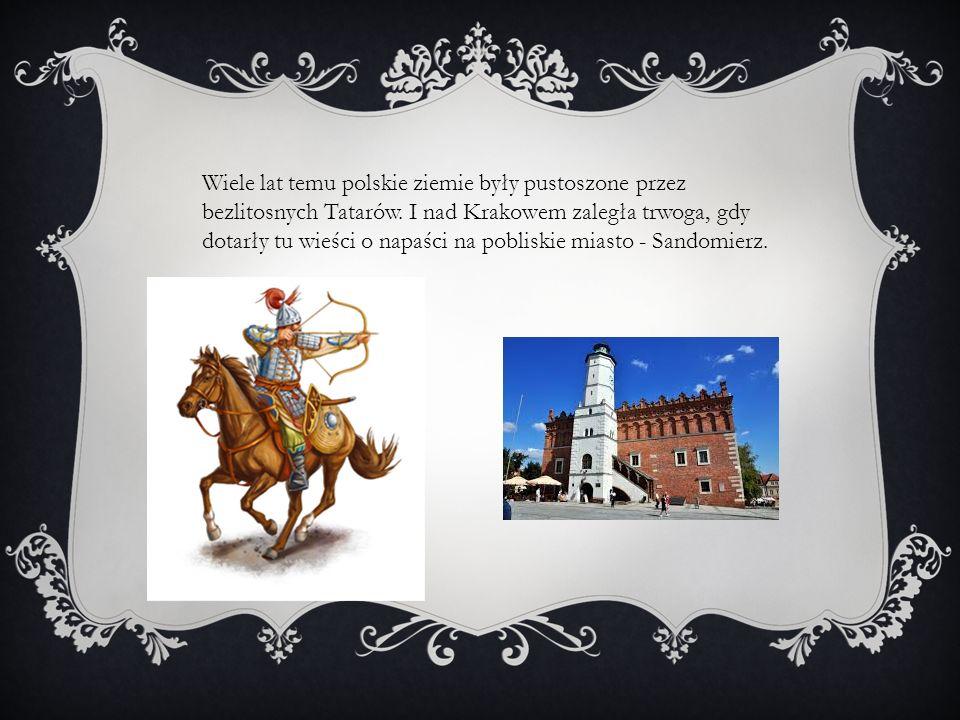 Wiele lat temu polskie ziemie były pustoszone przez bezlitosnych Tatarów.