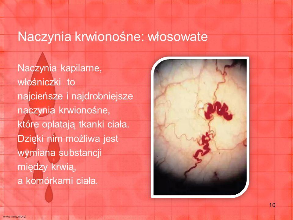 Naczynia krwionośne: włosowate