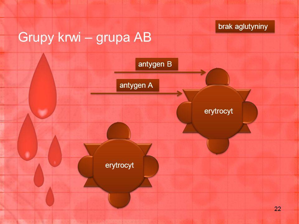 Grupy krwi – grupa AB brak aglutyniny antygen B antygen A erytrocyt