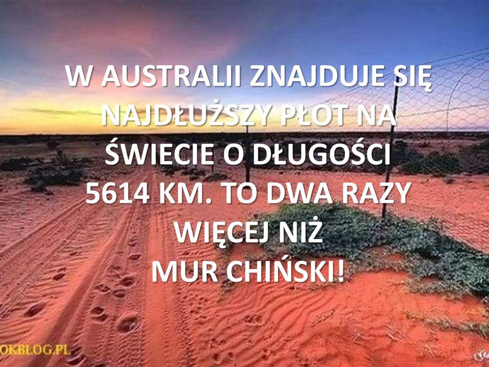 W AUSTRALII ZNAJDUJE SIĘ NAJDŁUŻSZY PŁOT NA ŚWIECIE O DŁUGOŚCI 5614 KM