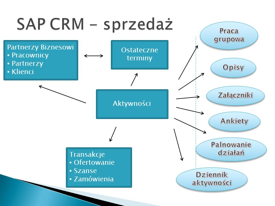 SAP CRM - sprzedaż Praca grupowa Partnerzy Biznesowi