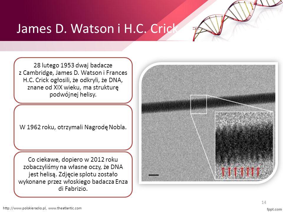James D. Watson i H.C. Crick
