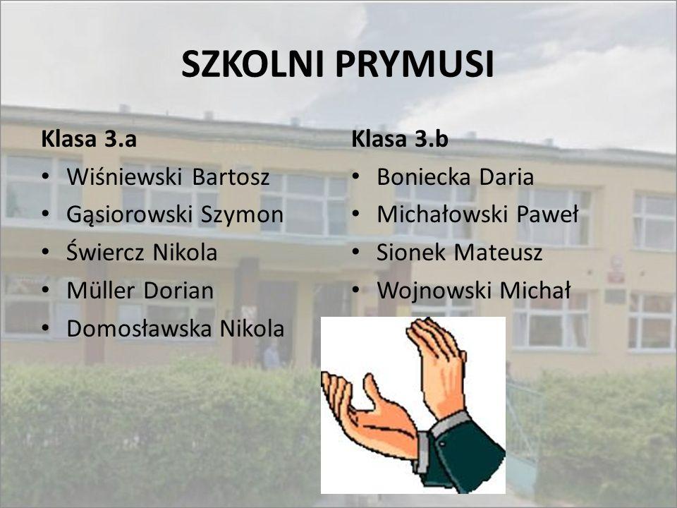 SZKOLNI PRYMUSI Klasa 3.a Wiśniewski Bartosz Gąsiorowski Szymon