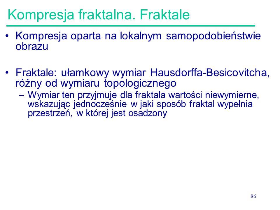 Kompresja fraktalna. Fraktale