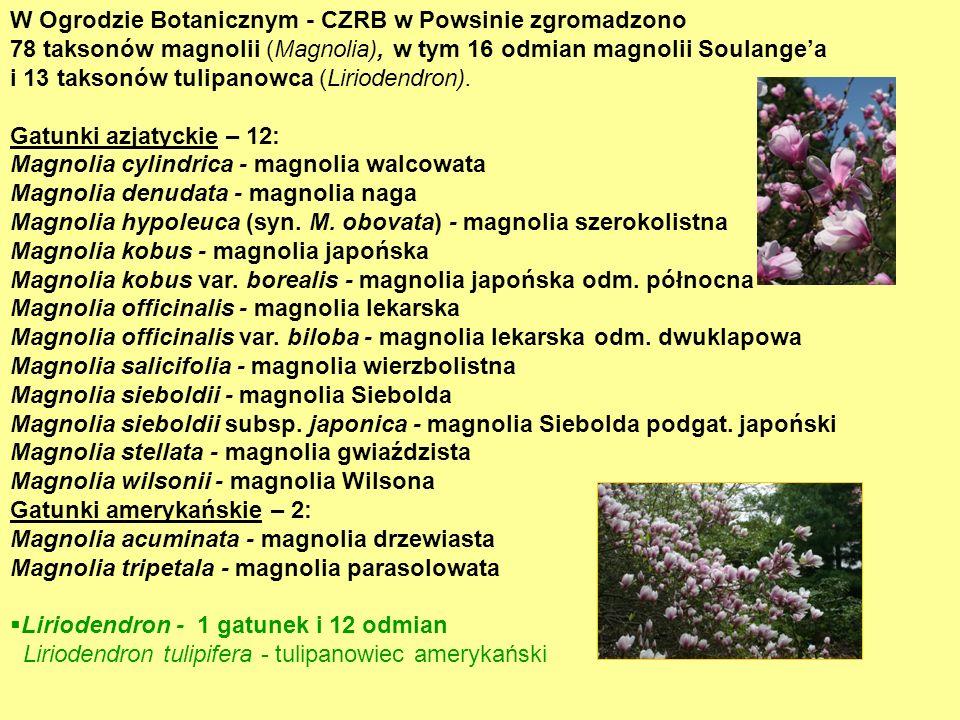 W Ogrodzie Botanicznym - CZRB w Powsinie zgromadzono