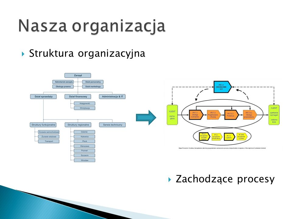 Nasza organizacja Struktura organizacyjna Zachodzące procesy