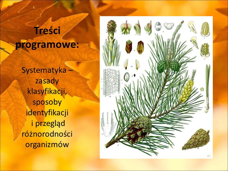 Treści programowe: Systematyka – zasady klasyfikacji, sposoby identyfikacji i przegląd różnorodności organizmów