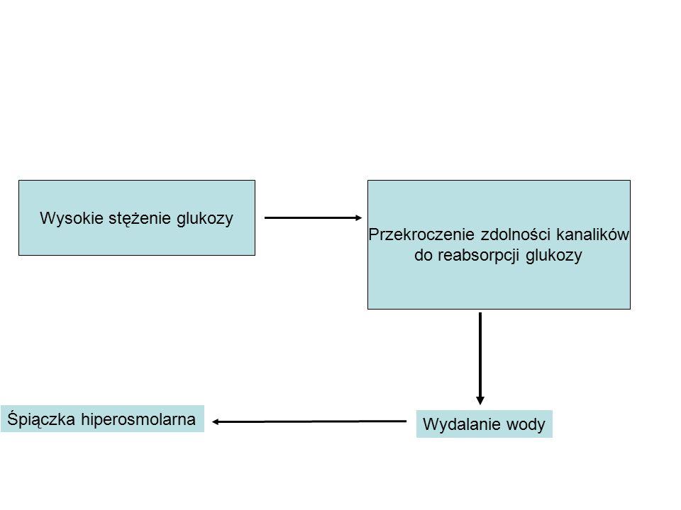 Wysokie stężenie glukozy Przekroczenie zdolności kanalików