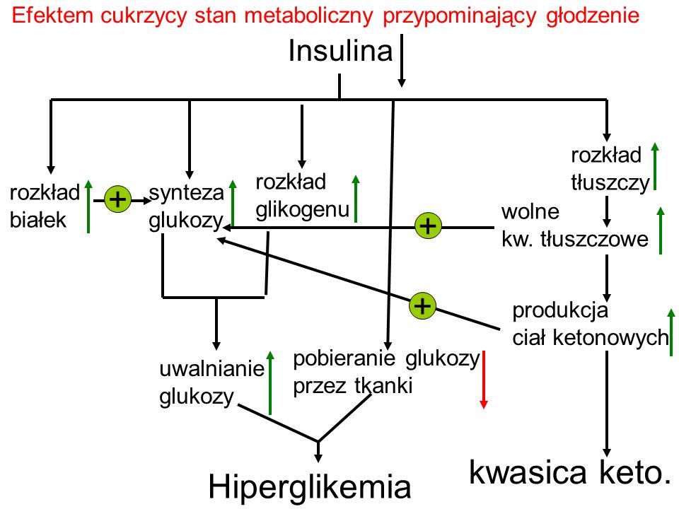 + + kwasica keto. Hiperglikemia Insulina