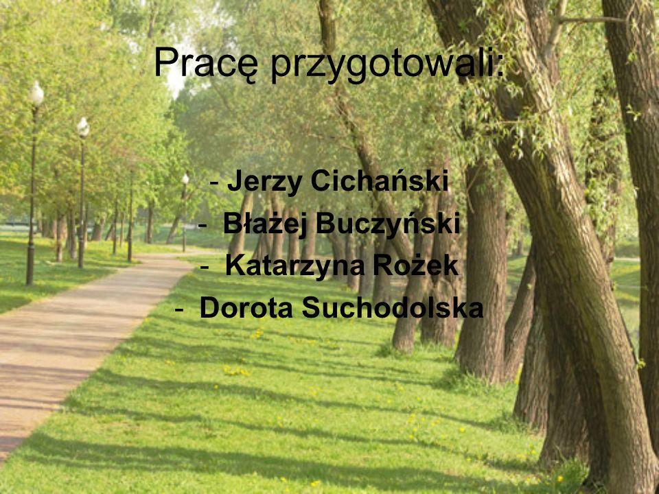 Pracę przygotowali: - Jerzy Cichański Błażej Buczyński Katarzyna Rożek