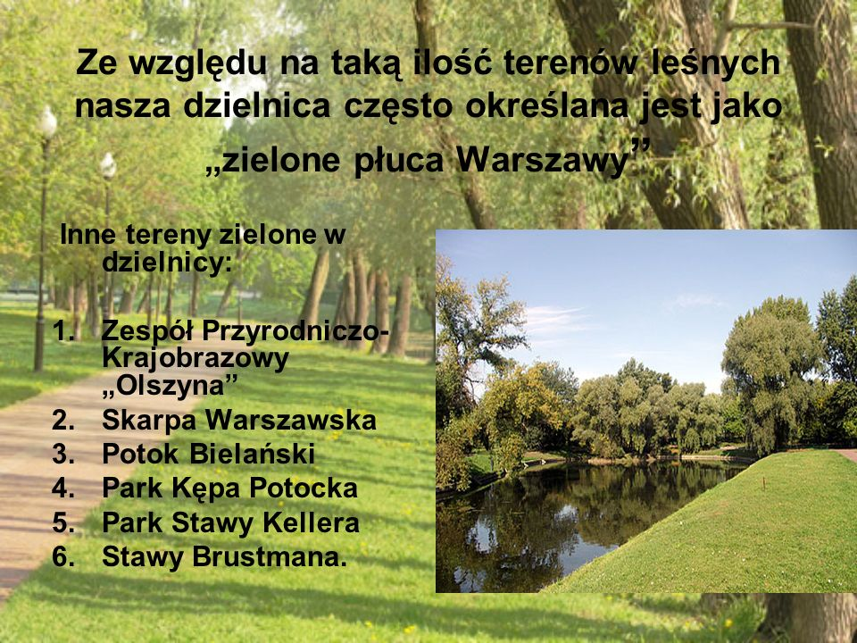 """Ze względu na taką ilość terenów leśnych nasza dzielnica często określana jest jako """"zielone płuca Warszawy"""