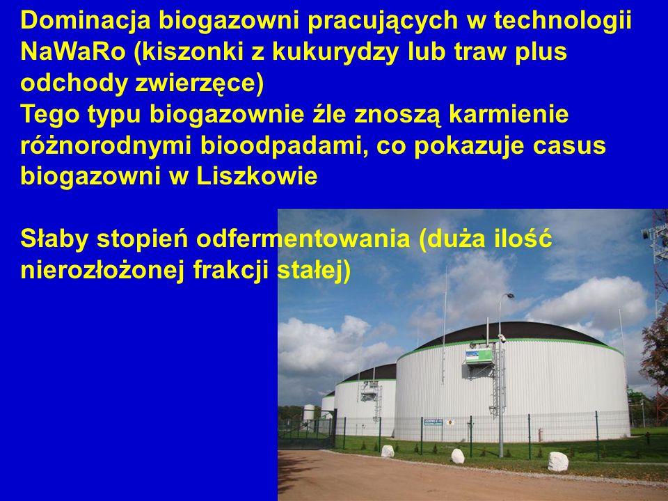 Dominacja biogazowni pracujących w technologii NaWaRo (kiszonki z kukurydzy lub traw plus odchody zwierzęce)