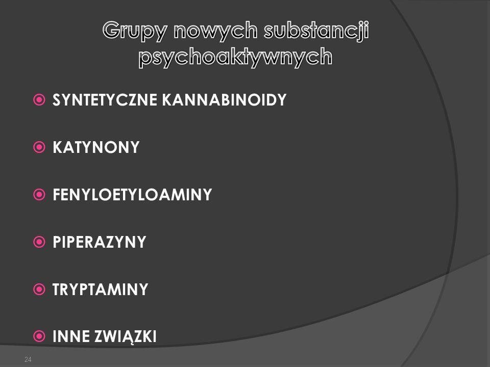 SYNTETYCZNE KANNABINOIDY KATYNONY FENYLOETYLOAMINY PIPERAZYNY