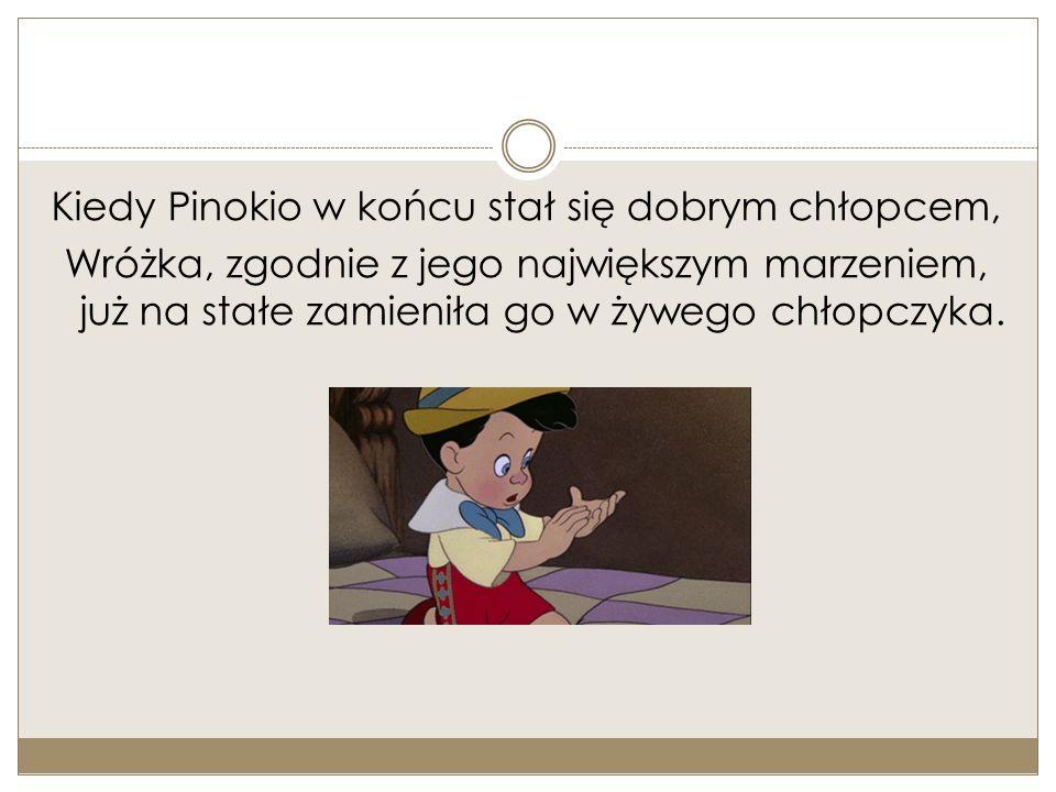 Kiedy Pinokio w końcu stał się dobrym chłopcem, Wróżka, zgodnie z jego największym marzeniem, już na stałe zamieniła go w żywego chłopczyka.