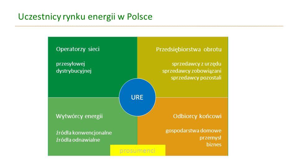 Uczestnicy rynku energii w Polsce