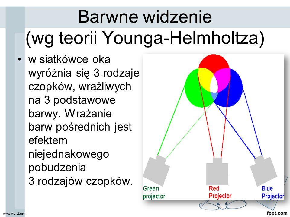 Barwne widzenie (wg teorii Younga-Helmholtza)