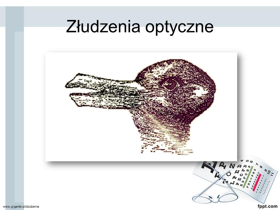 Złudzenia optyczne www.gigante.pl/zludzenia
