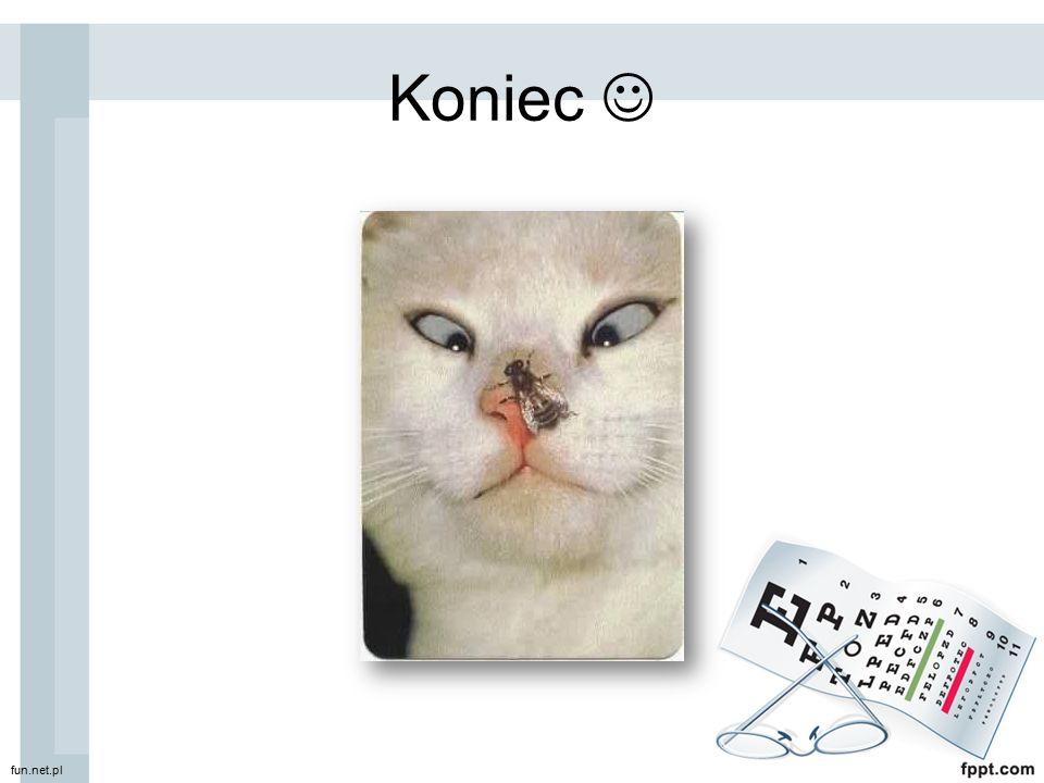 Koniec  fun.net.pl
